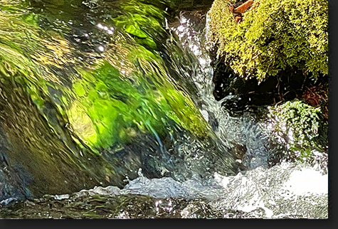 Mossy Stream at Sundance by Skip Weeks